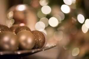 christmas-photo-300x200-7133847,